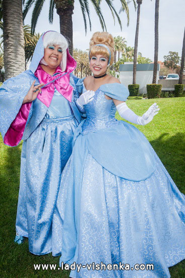 8. Disney Costumes for adults - Cinderella