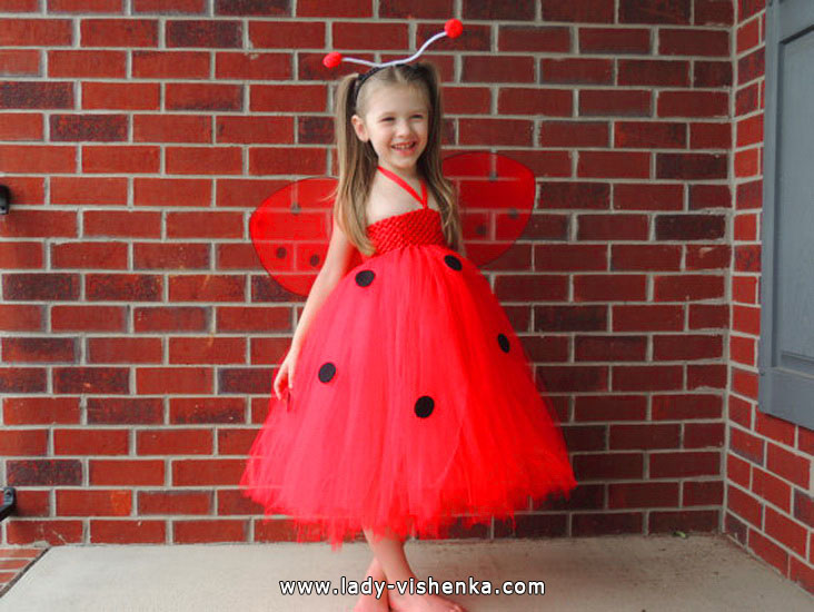Ladybird dress for little girl