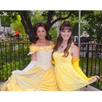 Princess Belle Halloween Costume for adults